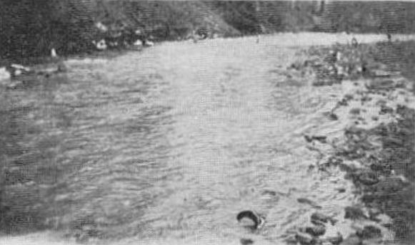 1923.jpg
