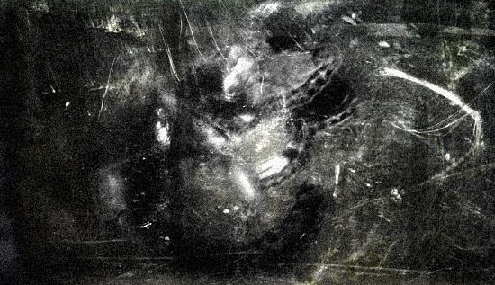 1124-C-Larval.jpg