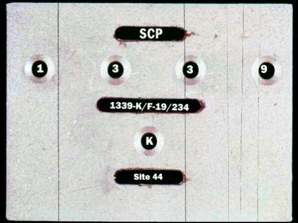SCP-1339 _Артикул (6 секунда)