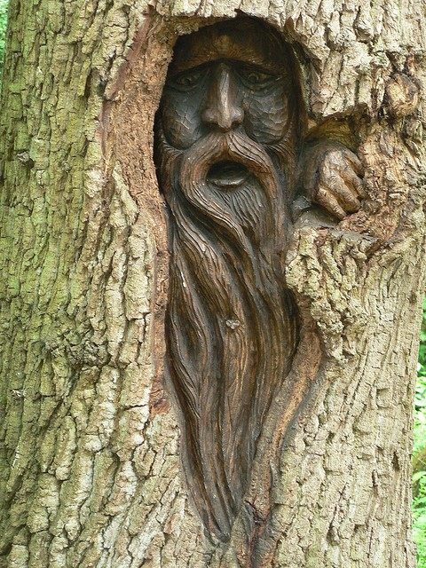 scp-tree-face.jpg