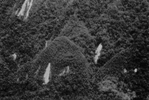 1888-1.jpg