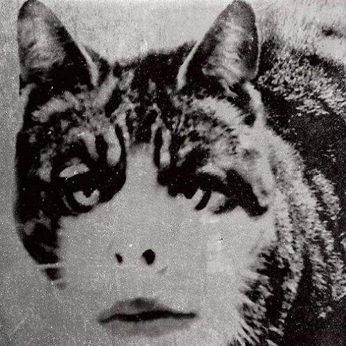1929-3.jpg
