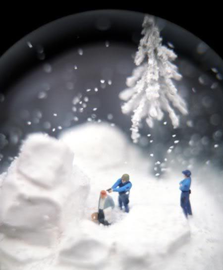 snowglobe.jpg