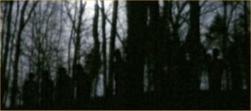 899-1.jpg