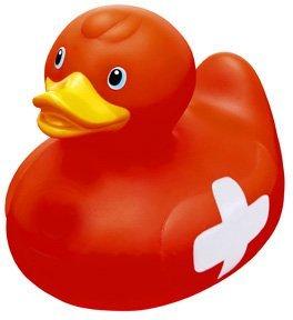 duck7.jpeg