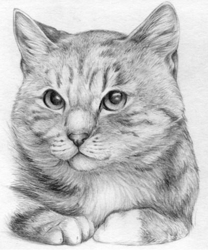 Sketch_Agatha.jpg.png